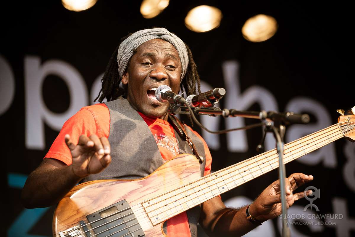 Richard Bona, 2014